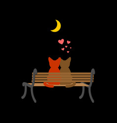 Cat lovers sitting on bench pet romantic date vector