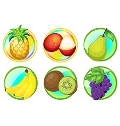 Fresh fruits on round badges vector image vector image