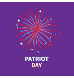 Patriot day big fireworks night sky star and strip vector