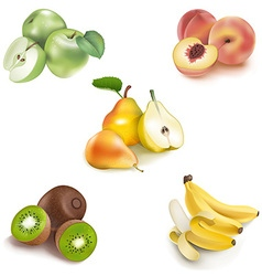 Icons fruits set vector