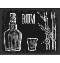 Glass and bottle of rum with sugar cane vector