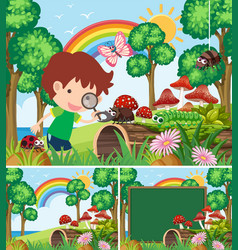 Scenes with boy looking at many insects in garden vector