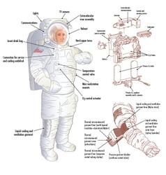 Apolo Astronaut vector image vector image