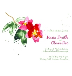 background with red watercolor camellias vector image vector image