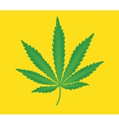 marijuana leaf isolated with yellow background vector image vector image