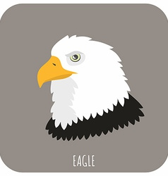 Animal portrait with flat design eagle vector