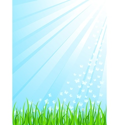 Sunrays vector