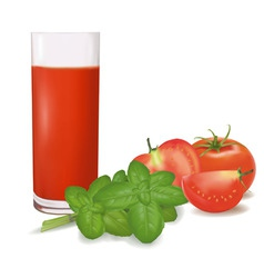 A glass of tomato juice vector