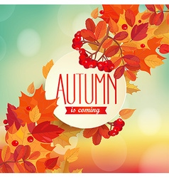 Autumn is coming - background vector image vector image