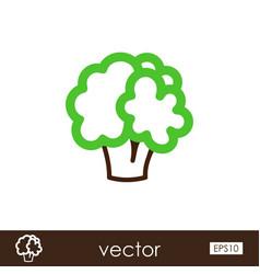 Cauliflower outline icon vegetable vector