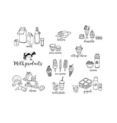 Set of hand drawn contour dairy products cheese vector