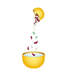 Water with flower corolla in bowl for songkran vector