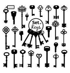 vintage antique key collection vector image