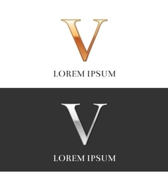5 v luxury gold and silver roman numerals sign vector