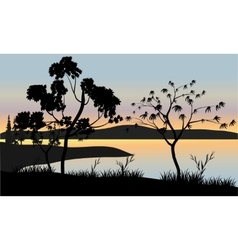 Tree at sunset scenery vector