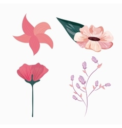 Drawing flower icon floral design graphic vector