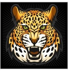 jaguar portrait Jaguars head on black vector image