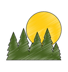 tree pines isolated vector image