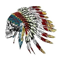 Hand Drawn Native American Indian Feather vector image