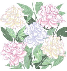 Background with pink and white peony vector