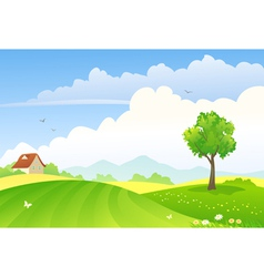 Green fields vector image