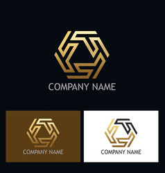 Shape circle geometry maze gold logo vector