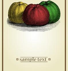 vintage tag vector image vector image