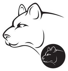 wildcat vector image vector image