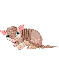 Armadillo cartoon vector