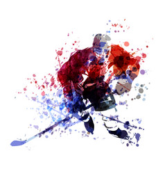 colorful of hockey player vector image vector image