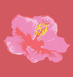 Hibiscus flower vector