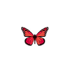 Realistic pink-wing element vector