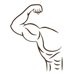 Bodybuilding muscle design vector