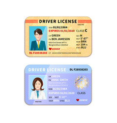 Different car driver licenses with photo on white vector