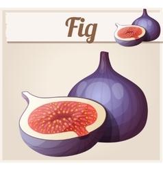 Fig fruit cartoon icon vector