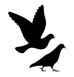 Going flying pigeons black silhouette vector