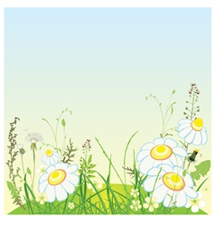Green landscape flowers and grass meadow vector