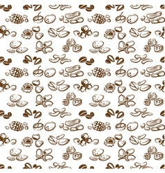Nuts background vector