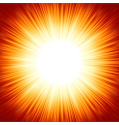 summer sun light burst vector image