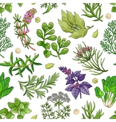 Green pattern with herbs on white vector