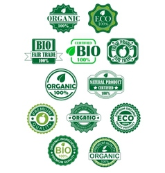 Natural and bio labels vector image