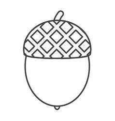 Thin line acorn icon vector