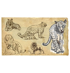 Animals theme big cats - hand drawn pack vector