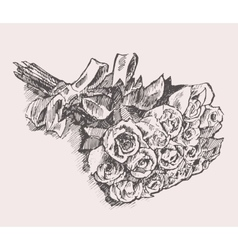 Bouquet of roses with ribbon hand drawn sketch vector