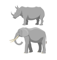 african elephant and rhinoceros cartoon vector image vector image