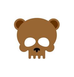 bear skull isolated brown bears skeleton head vector image
