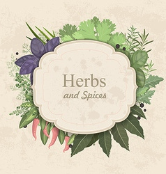 Vintage card with herbs and spices on paper vector