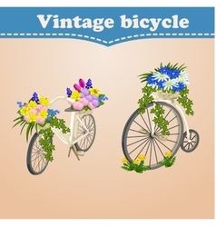 Vintage bicycle card with spring and flowers vector