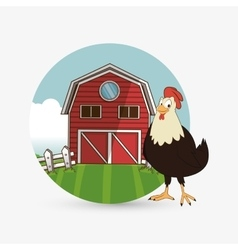 Farm design animal icon nature concept vector