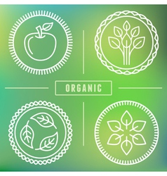 organic icons vector image